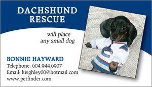 Dachshund Rescue Business Card